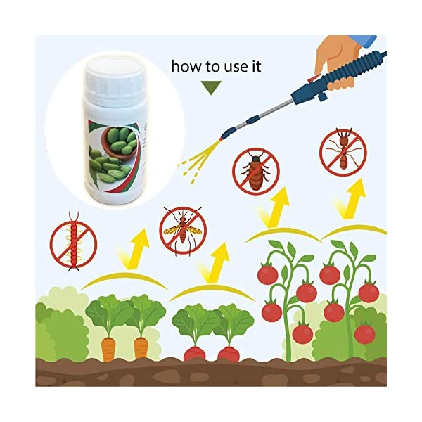 Olio di Neem Insetticida, Repellente, Disinfettante Bio Orto Giardino, Anti Zanzare, Afidi, Cimici e Insetti fastidiosi… 3 spesavip