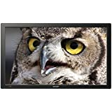 Sharp PN-T321 31.5-Inch Screen TFT LCD Widescreen Monitor