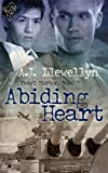 Front cover for the book Abiding heart by A.J. Llewellyn