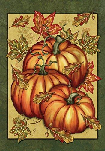 (Toland Home Garden Pumpkin Spice 28 x 40 Inch Decorative Fall Autumn Leaves Gourd House Flag )