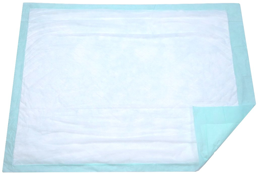 Extra Large Disposable Incontinence Bed Pad 10 Count (Size 36Wx36L) - Underpad Incontinence Protection for Adult, Child, or Pets - Absorbent Waterproof Chux by BrightCare