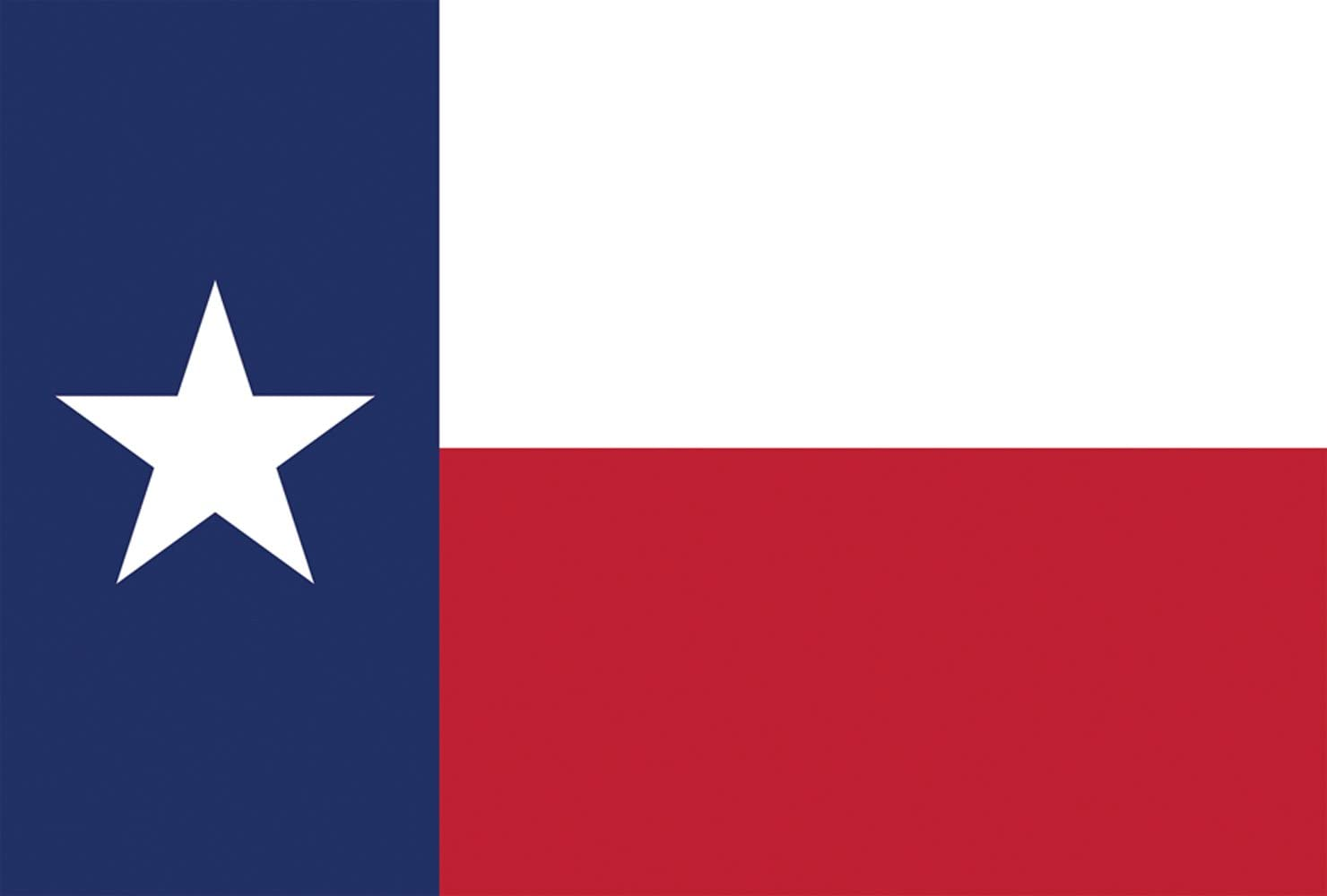 Toland Home Garden Texas State Flag 12.5 x 18 Inch Decorative USA Garden Flag