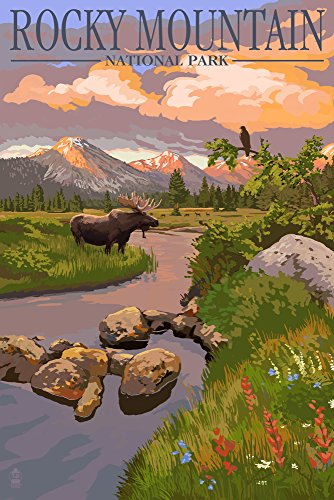Rocky Mountain National Park, Colorado - Moose and Meadow (12x18 Art Print, Wall Decor Travel Poster)