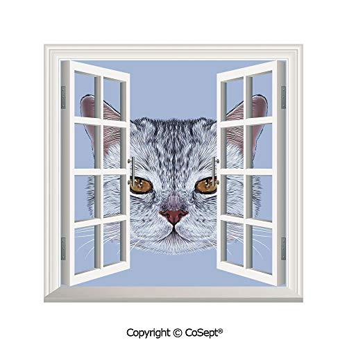 (SCOXIXI Artificial Window Wall Applique Landscape Wall Decoration,Scottish Straight Kitty Portrait Pet Lovely Companion Hipster Animal Graphic,Window Decorative Decals Interior(25.86x22.63 inch))