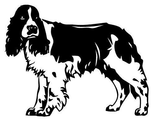 Springer Spaniel Sticker - Springer Spaniel Decal Sticker - Peel and Stick Sticker Graphic - - Auto, Wall, Laptop, Cell, Truck Sticker for Windows, Cars, Trucks