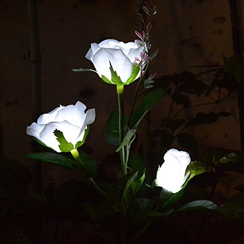 (Chasgo Solar LED Garden Light Outdoor Decorative Garden Stake Light, Solar LED Rose Flower Light Outdoor Garden Decor, White Rose Flower)