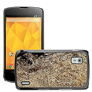 Hot Style Cell Phone PC Hard Case Cover // M00309171 Grass Brown Summer Dirt Nature Park // LG Nexus 4 E960