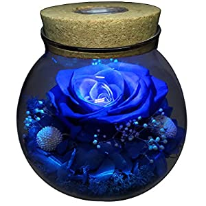 Preserved Real Roses with Colorful Mood Light Wishing Bottle,Eternal Rose,Never Withered Flowers,for Bedroom Party Table Decor, Christmas Decorations,a Gifts for Women (Blue)