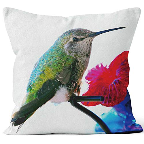 Nine City Young Female Anna's Hummingbird Sitting on a Glass Feeder Throw Pillow Cushion Cover,HD Printing Decorative Square Accent Pillow Case,18