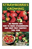 Strawberries Growing: 20 Proven Tips How To Grow Strawberries And Crop First Harvest This Year: (Gardening Books, Better Homes Gardens)