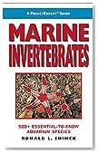 A PocketExpert Guide to Marine Invertebrates: 500+ Essential-to-Know Aquarium Species