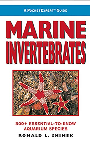 A PocketExpert Guide to Marine Invertebrates: 500+ Essential-to-Know Aquarium Species