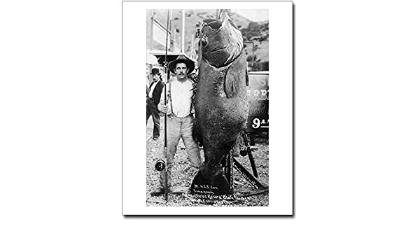 BLACK SEA BASS WORLD RECORD GIANT FISH 1903 8x10 SILVER HALIDE PHOTO PRINT