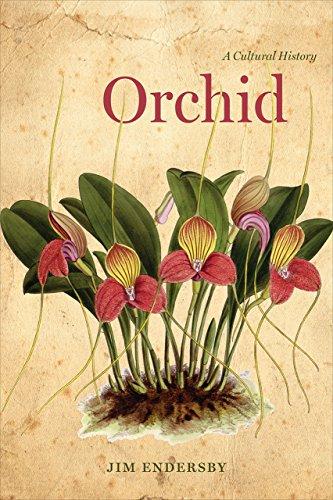 orchid-a-cultural-history