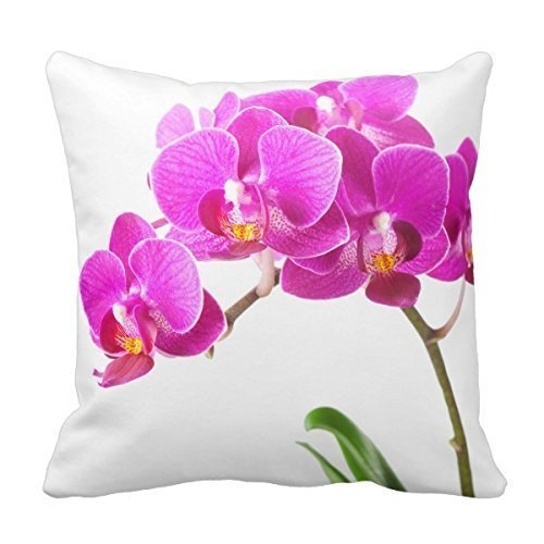 (Decors Pink Purple Dendrobium Orchid Tropical Flower Throw Pillow Case Cushion Cover Home Sofa Decorative 18 X 18)