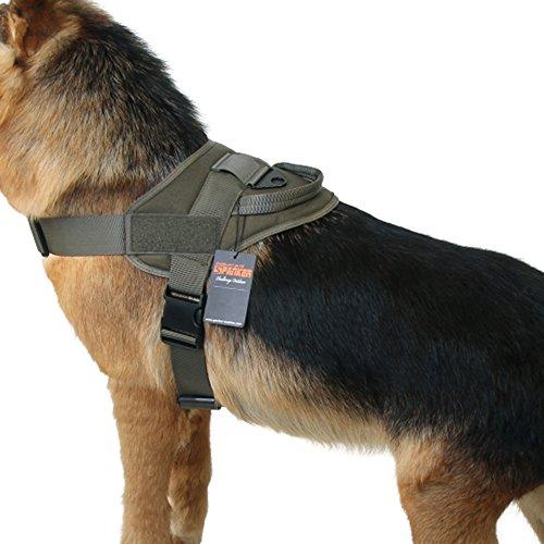 - EXCELLENT ELITE SPANKER Tactical Dog Vest Training Military Patrol K9 Service Dog Harness Adjustable Nylon Dog Harness with Handle(Ranger Green-L)