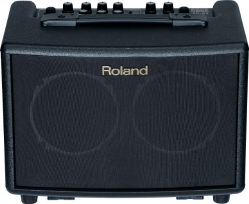 Roland AC33 Battery-Powered Acoustic Chorus (Street Battery Powered Stereo Amplifier)