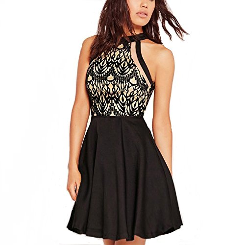 Cotton Mesh Halter Dress (Dreaweet Women's Mesh Vintage Floral Lace Swing Halter Neck Sleeveless Skater Dress)