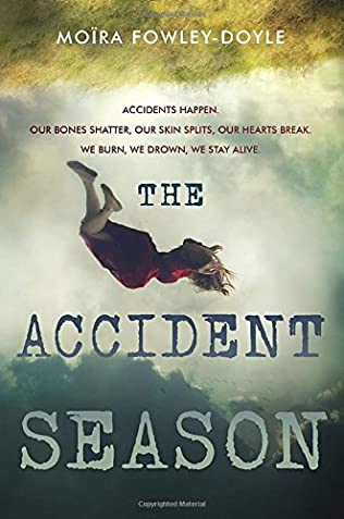 book cover of The Accident Season