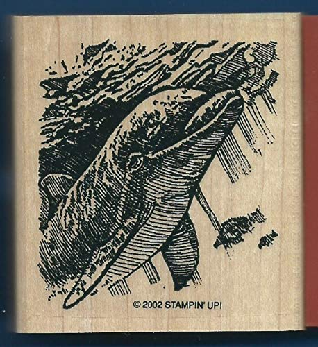 Rubber Stamp Frames Frames New Dolphin Diving Fish Ocean Scene Under The SEA Life Rubber Stamp by OutletBestSelling