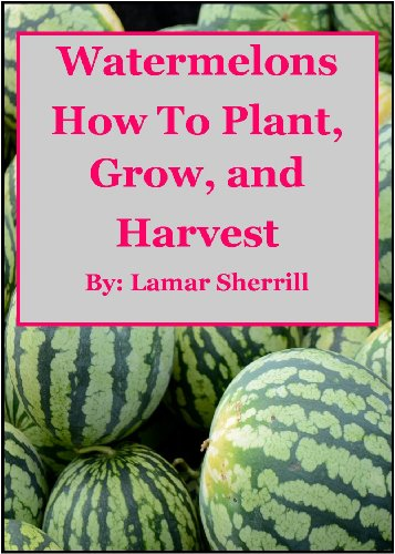 Watermelons  How to Plant, Grow, and Harvest for...