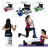 Portable Exercise Equipment, Resistance Stretch Bands & Shoulder Pulley Set for Fitness at Home, Office or Travel. Strengthen Legs & Arms. Recover from Injury. Bag & Door Anchor. Blue Med Tens.