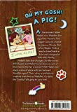 Once Upon A Swine (Turtleback School & Library Binding Edition) (Gravity Falls Chapter Book)