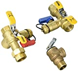 Webstone 44443WPR3 3/4'' E2 EXP Tankless Water Heater Service Valves 4444W Series