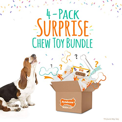 Nylabone Chew Toy Dog Surprise Box