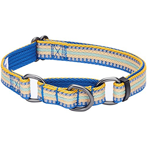 Blueberry Pet 8 Colors 3M Reflective Multi-Colored Stripe Safety Training Martingale Dog Collar, Ginger and Blue, Large, Heavy Duty Adjustable Collars for Dogs