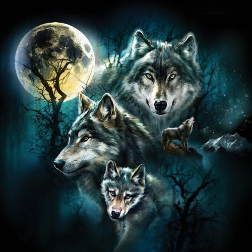 Wolf Family Collage 500 pc Jigsaw Puzzle