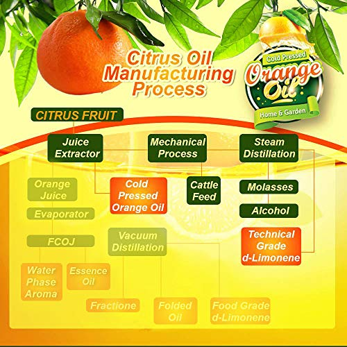 Pure Cold Pressed ORANGE OIL Concentrate - 32 oz (D-Limonene) by EcoClean Solutions Inc (Image #4)