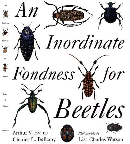 an-inordinate-fondness-for-beetles