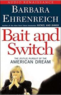 barbara ehrenreich maid to order