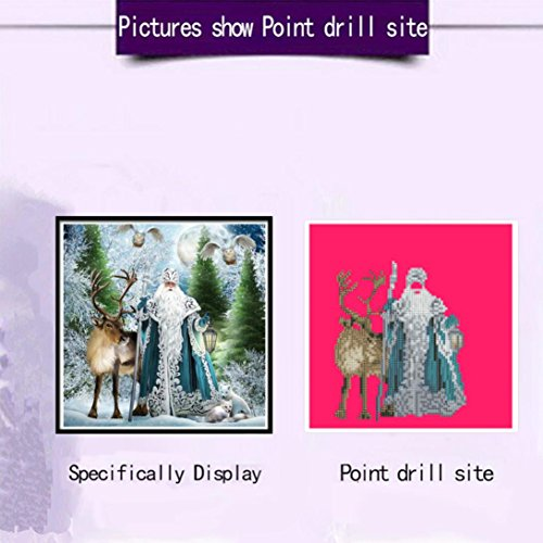 DIY 5D Diamond Painting by Number Kits , AMA(TM) Crystal Rhinestone Pasted Diamond Embroidery Cross Stitch Canvas Paintings Pictures Arts Craft for Home Wall Decor (E)