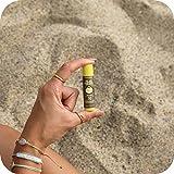 Sun Bum SPF 30 Sunscreen Lip Balm I Vegan and