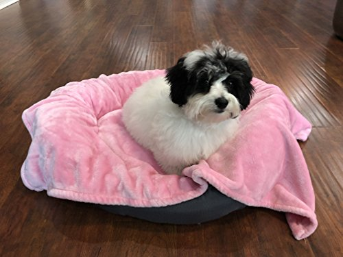 Higher Comfort Super Soft Pet Blanket For Small Dogs, Puppies, Cats & Kittens - Playful Pink - 30
