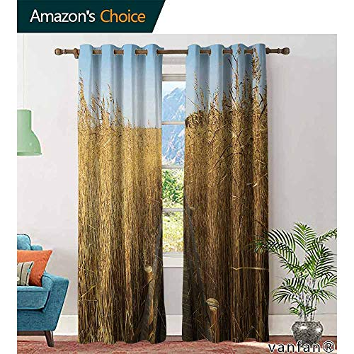 (Big datastore home Nature Bedroom Curtains,Old Narrow Floating Walkway in The Lake Surrounded by Reeds Greenland Nature Theme Room Darkening Curtains, W96 x L84)