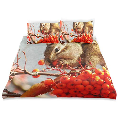 - Squirrel Animal Tree Nature 3 Piece Bedding Duvet Cover Set Twin Size 1 Quilt Cover and 2 Pillow Cases Shams 66''x 90'' Decorative Bedding Set for Kids Girls Boys
