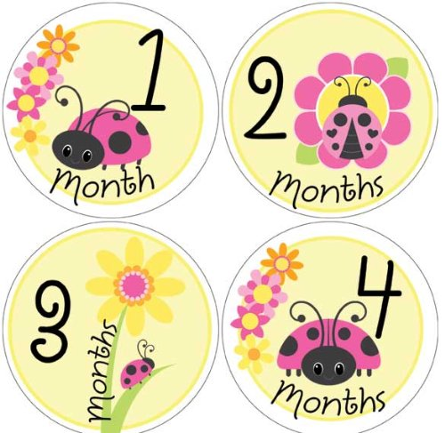 Ladybug Baby Month Stickers for Bodysuit #38, Baby & Kids Zone