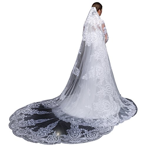Length Embroidery Wedding Veil (Edith qi 1 Tier Top-level 3M Long Wedding Veils Cathedral with Embroidery Lace Edge)