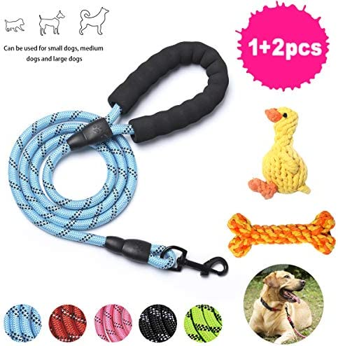 DRT DERUITAI 5 FT Strong Dog Leash with Comfortable Padded Handle and Highly Reflective Threads Dog Leashes for Medium and Large Dogs