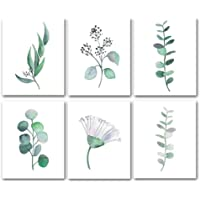 JVSISM Botanical Canvas Wall Art, Unframed Eucalyptus Leaves Set, Nature Floral Green Plant for Wall Decor (Frameless,6…