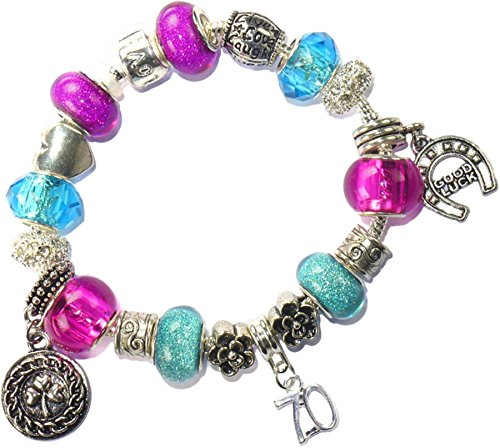 aa7f166d7 Charm Buddy 60th Birthday Good Luck Lucky Blue Hot Pink Pandora Style  Bracelet With Charms Gift