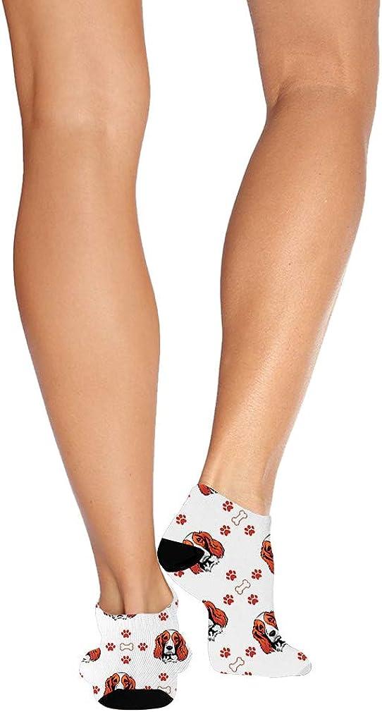 Welsh Springer Spaniel Dog Pattern #1 Men-Women Adult Ankle Socks