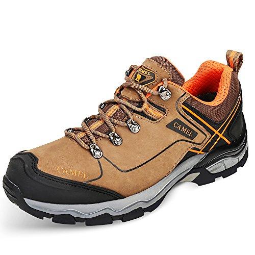 Hommes Pour Randonnée De Low top Trekking Kaki En Professionnel Walking Plein Outdoor Sneaker Camel Chaussures Antidérapant Air wq5pII