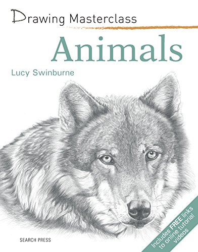 Drawing Masterclass: Animals