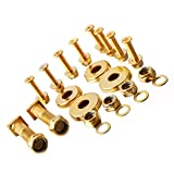 Golden Tone Standard Skateboard Hardware Screws Set