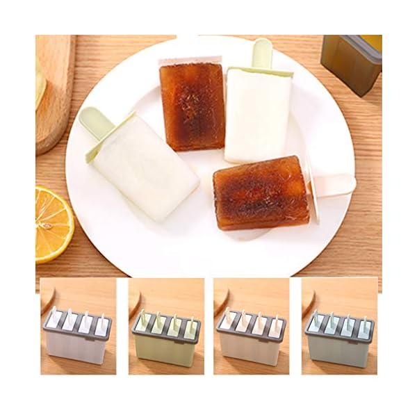 Rolin Roly Set di 2 Stampi per Gelato Durevole Stampi per ghiaccioli Riutilizzabile Gelati Crema Stampo Design a Doppio… 5 spesavip