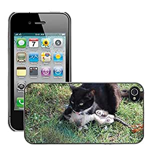 Super Stellar Slim PC Hard Case Cover Skin Armor Shell Protection // M00126579 Cats Mom Cat And Her Calf // Apple iPhone 4 4S 4G